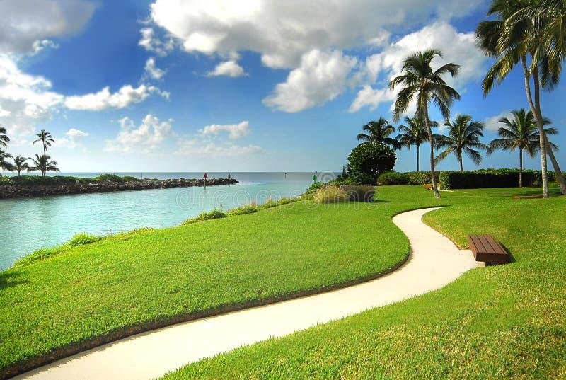 Parque do oceano foto de stock royalty free