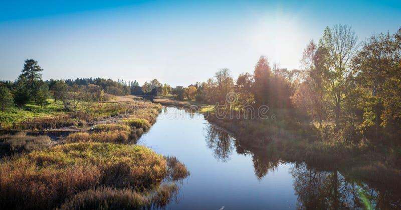 Parque do outono foto de stock royalty free