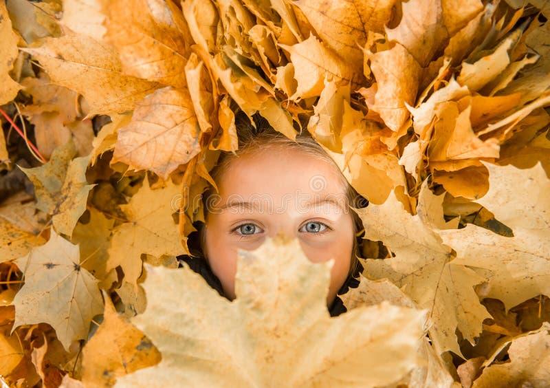 Parque do outono da caminhada imagem de stock royalty free