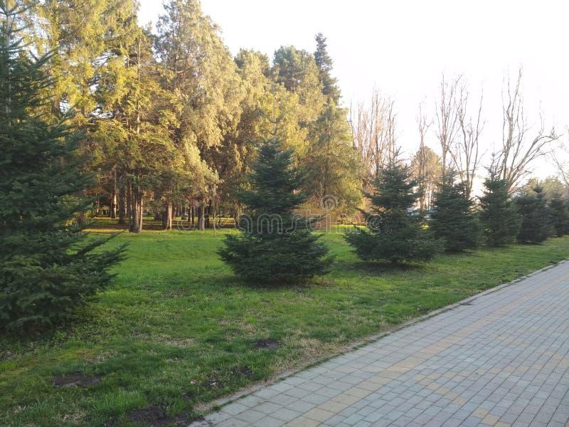 parque do outono de Krasnodar imagem de stock