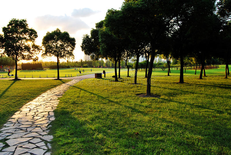 Parque do século de ShangHai fotos de stock royalty free