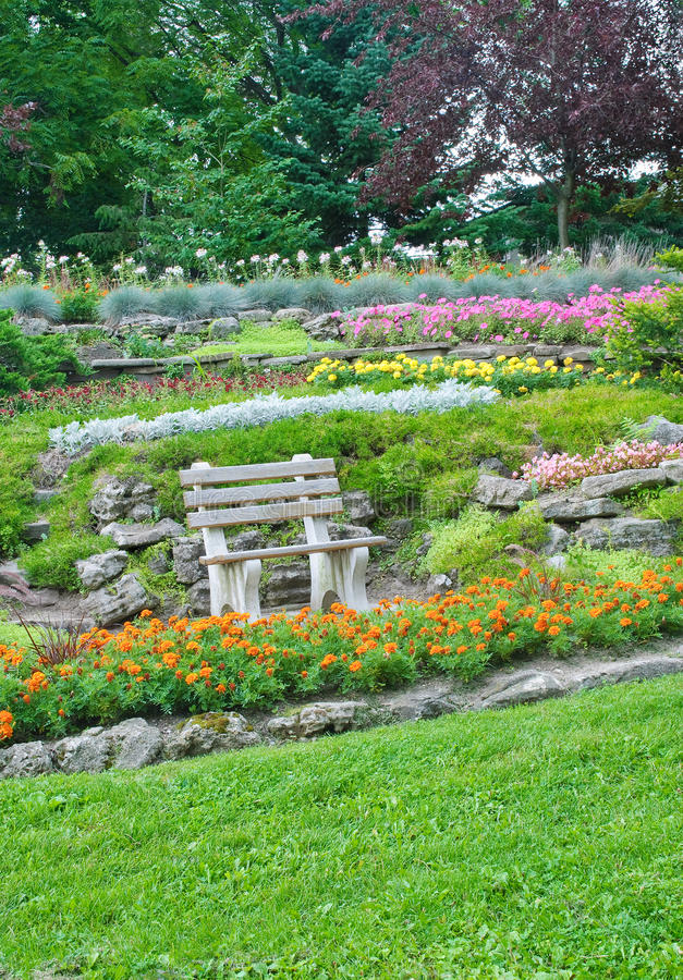 Parque do verão, banco em um jardim, flores, plantas fotografia de stock royalty free