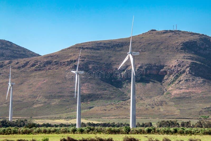 Parque eólico con el poder eólico que genera las turbinas foto de archivo