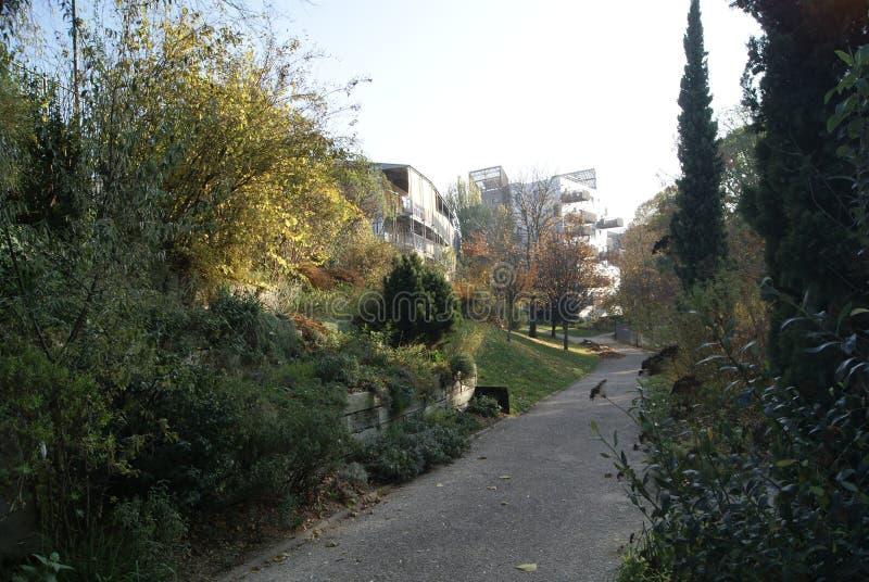 Parque e algumas casas imagem de stock