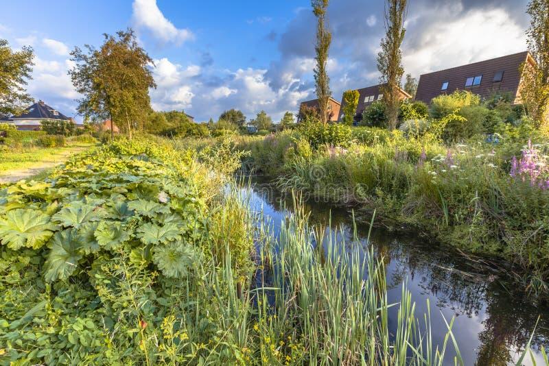 Parque ecológico com o rio na área urbana fotos de stock