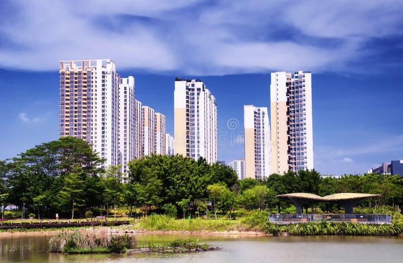 Parque ecológico Shenzhen China dos manguezais de Futian imagem de stock