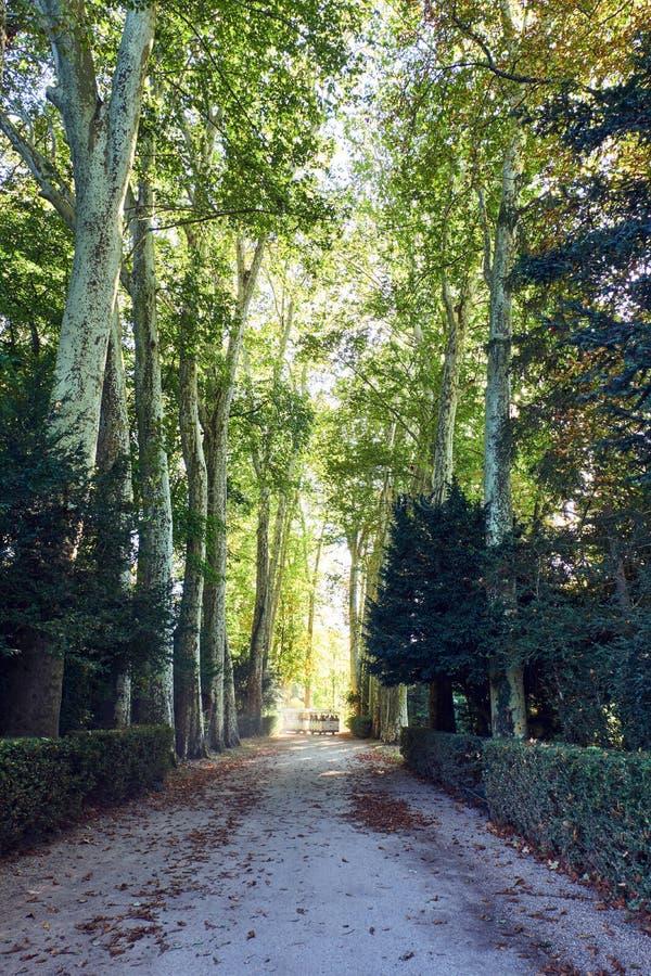 Parque el palacio de Fontainebleau en la luz del día imagen de archivo libre de regalías