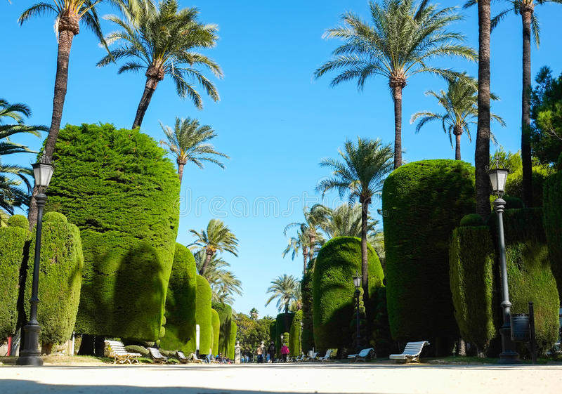 Parque em Cadiz fotos de stock