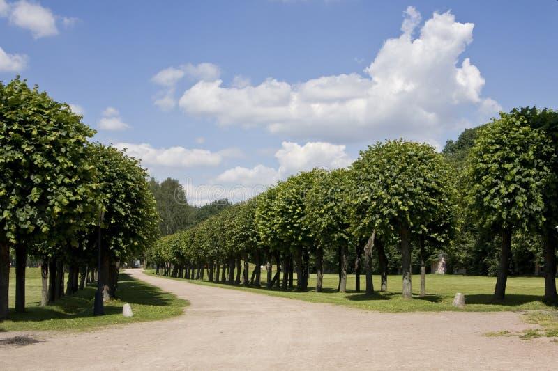 Parque em Kuskovo, Moscovo imagens de stock