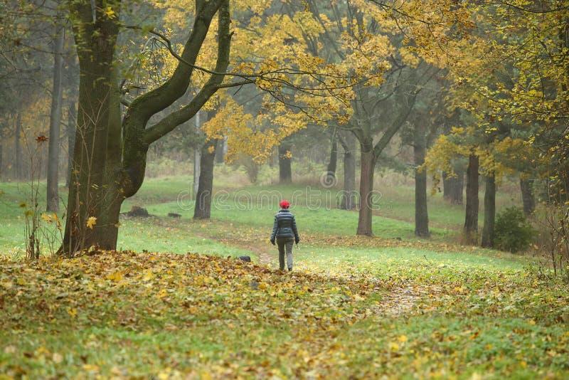 Parque en caída con la mujer que camina imagenes de archivo