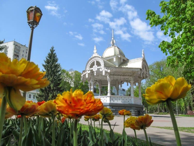 Parque en el cuadrado de Pokrovsky con un cenador tallado de madera de la cama y del vintage de flor en Sumy fotografía de archivo