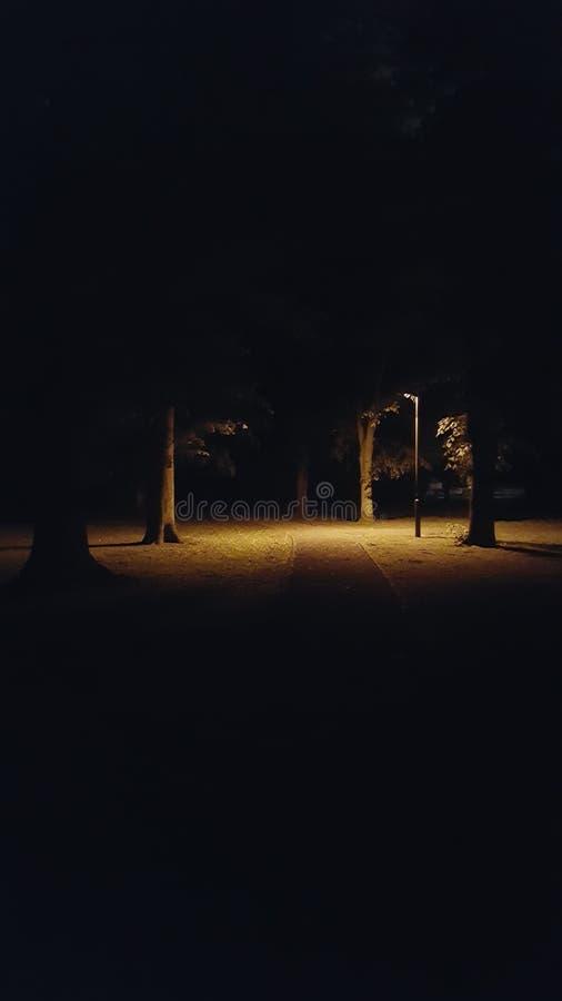 Parque en la obscuridad imagen de archivo