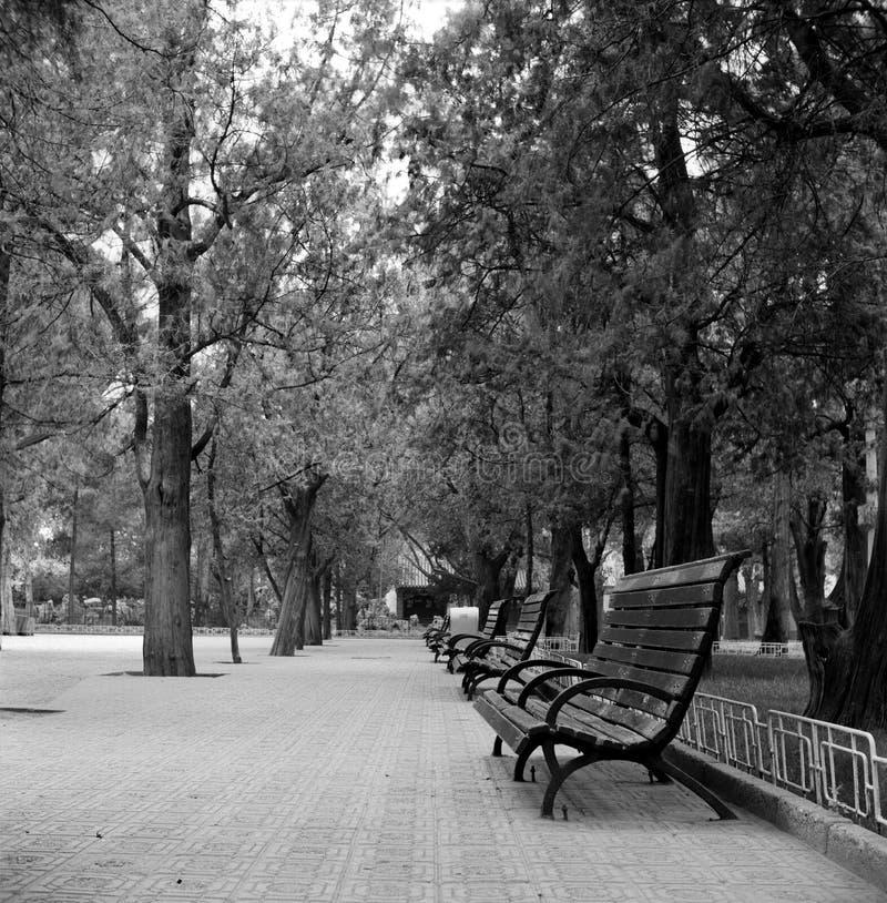 Parque en la silla fotos de archivo