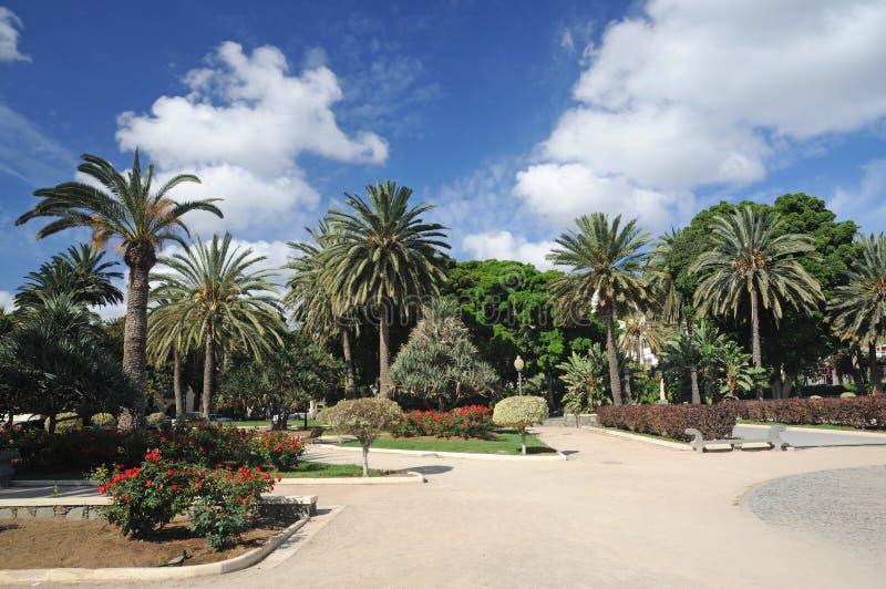 Parque en Las Palmas, España fotografía de archivo
