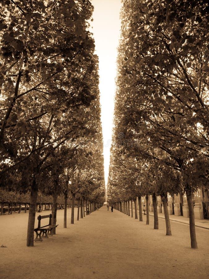 parque en París fotos de archivo