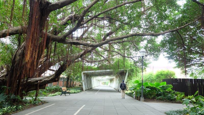 Parque en Taiwán imagen de archivo libre de regalías