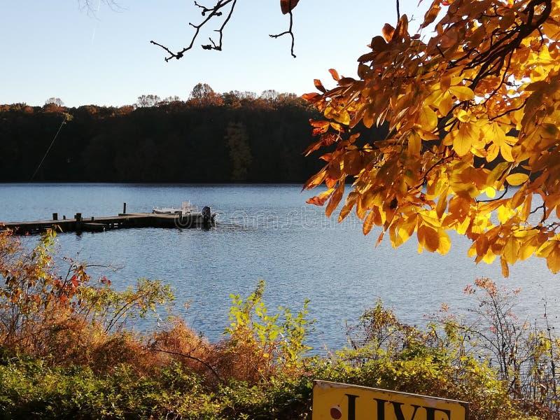 Parque estadual da lagoa de Killens de Delaware fotografia de stock