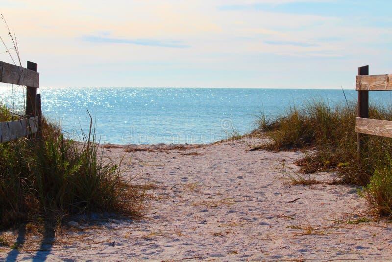 Parque estadual da praia da lua de mel, waterview fotos de stock