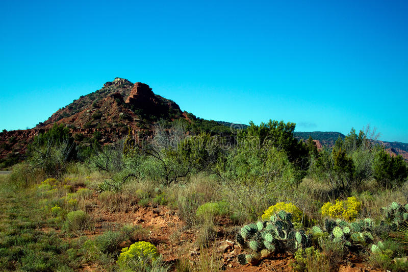 Parque estadual das gargantas de Caprock em Texas fotografia de stock royalty free