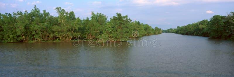 Parque estadual de Fausse Pointe do lago, Louisiana imagens de stock