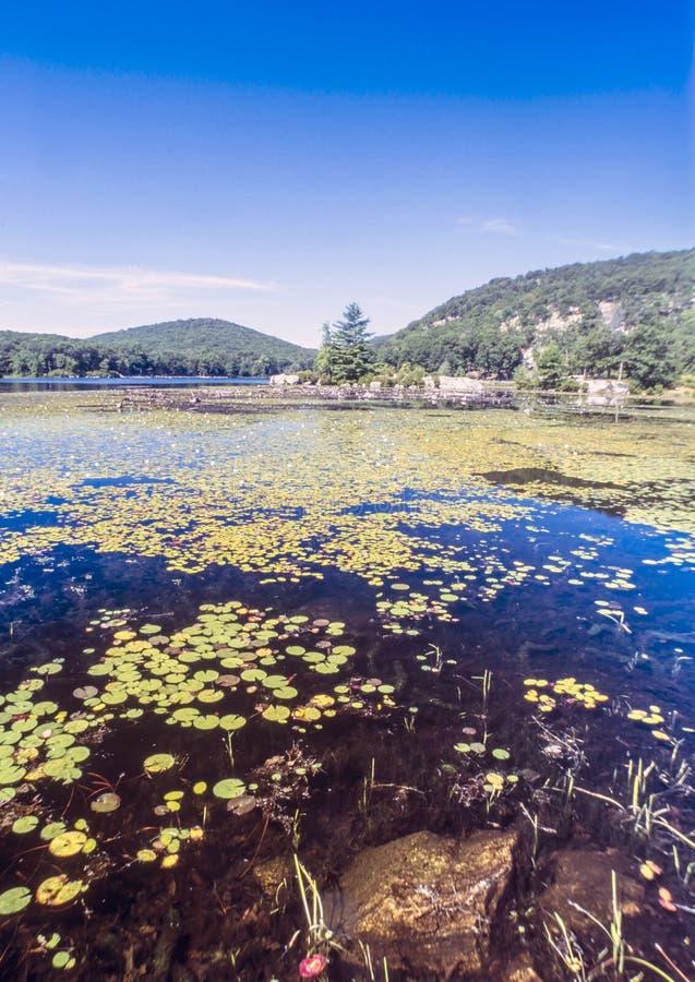 Parque estadual de Harriman, lago new York State imagens de stock royalty free