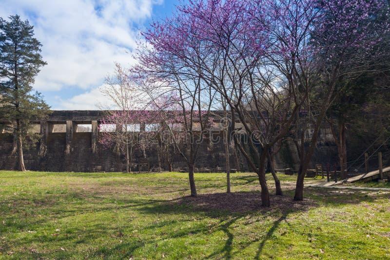 Parque estadual de pedra ereto foto de stock royalty free