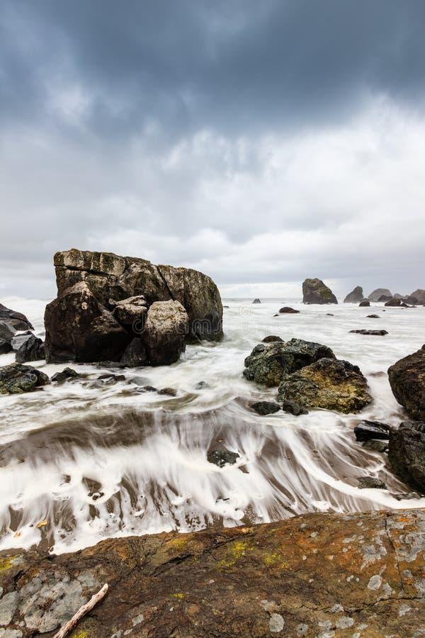 Parque Estatal Samuel H Boardman, Oregón, Costa Oeste, Estados Unidos de América, Travel USA, exterior, aventura, paisaje, selva  imagen de archivo