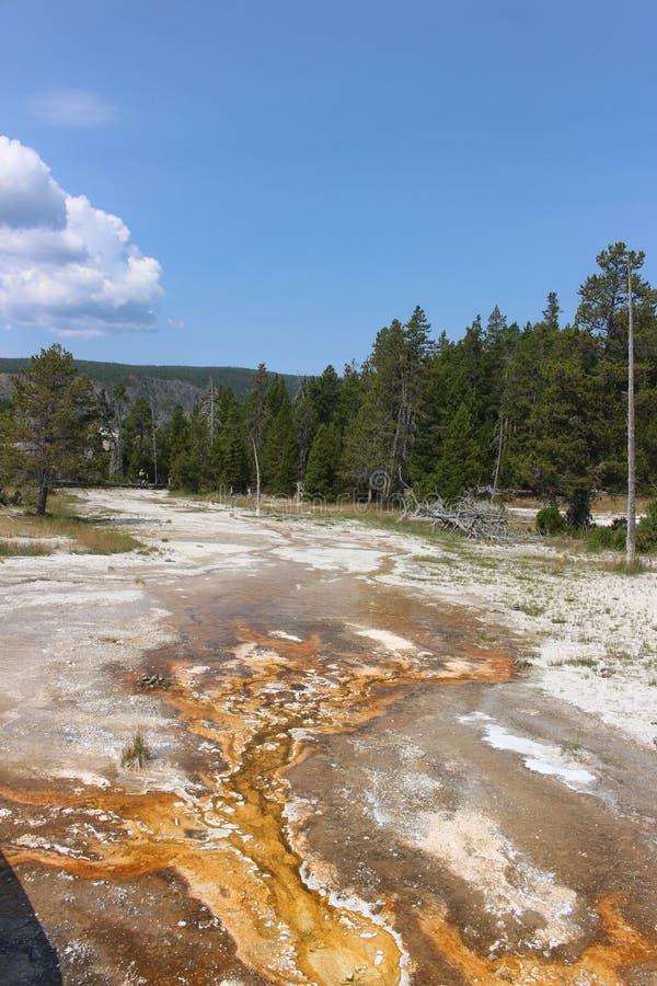Parque fiel velho - Wyoming fotos de stock