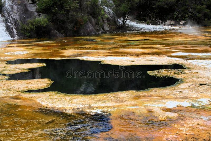 Parque geotérmico ocultado Korako de Orakei: Opinión sobre piscina caliente con la alfombra amarilla de las algas fotos de archivo