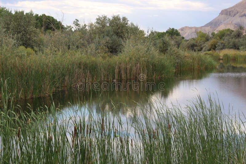 Parque I, palizada Colorado de Riverbend fotos de archivo