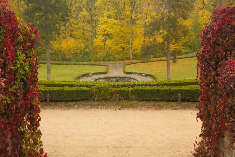 Parque inglês no outono orlarado com arbustos vermelhos imagens de stock