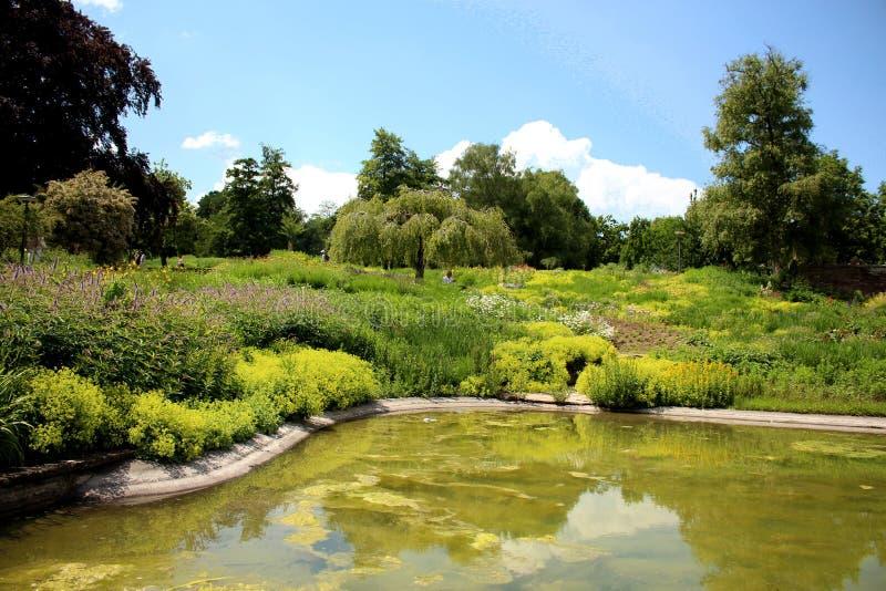 Parque Killesbergpark de Killesberg en Stuttgart, Alemania fotografía de archivo