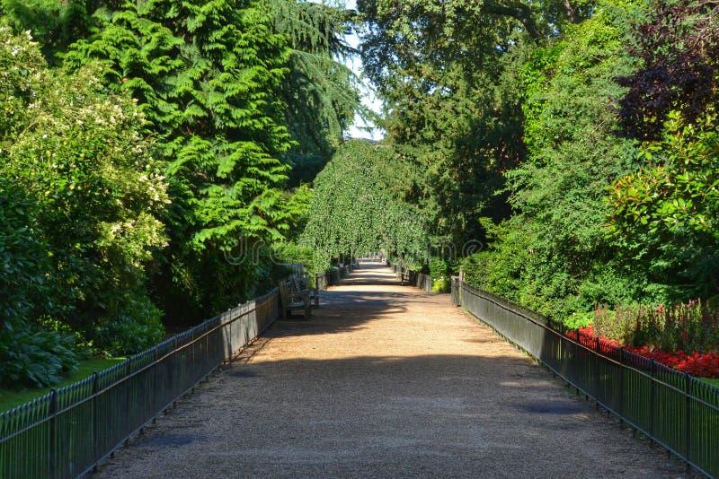 Parque Londres dos jardins de Kensington imagens de stock royalty free