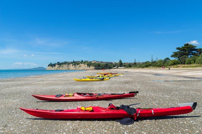 Parque longo da praia da baía em Auckland, Nova Zelândia fotografia de stock