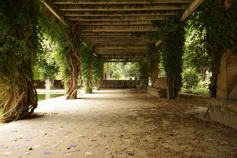 Parque Maria Luisa en Sevilla, España foto de archivo libre de regalías