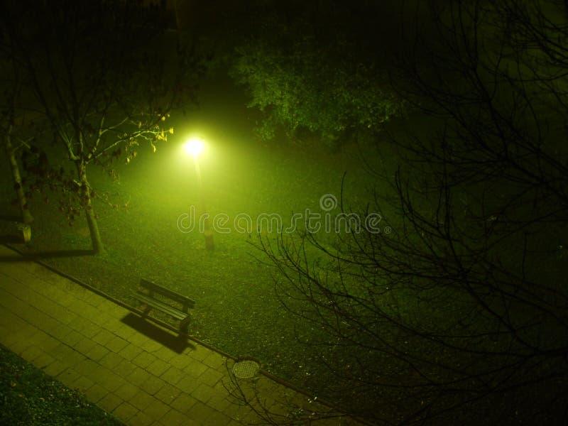 Parque na névoa imagem de stock royalty free