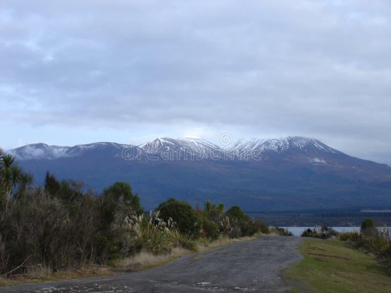 Parque nacional 1 de Tongariro imagem de stock