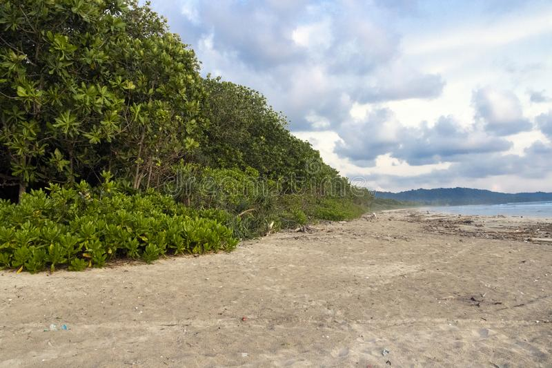 Parque nacional Alas Purwo imagens de stock royalty free