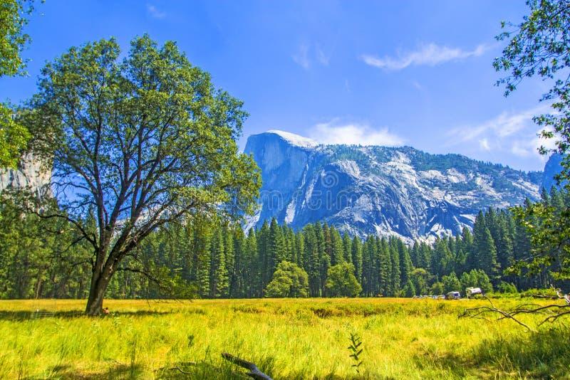 Parque nacional C de Yosemite A imagenes de archivo