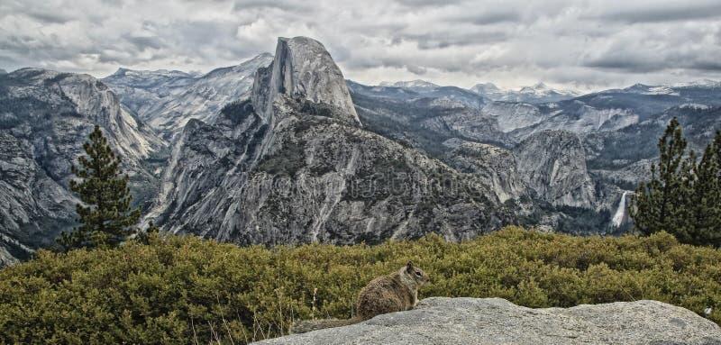 Parque nacional Califórnia de Yosemite da meia abóbada foto de stock royalty free