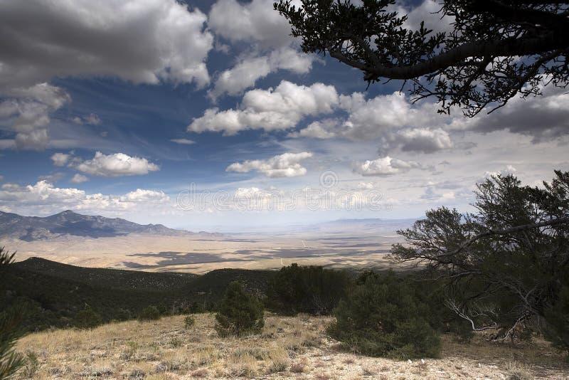 Parque nacional da grande bacia foto de stock royalty free