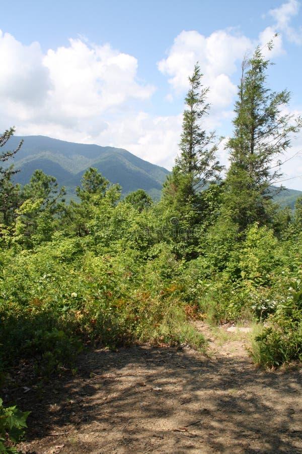 Parque nacional 2 da montanha fumarento fotografia de stock