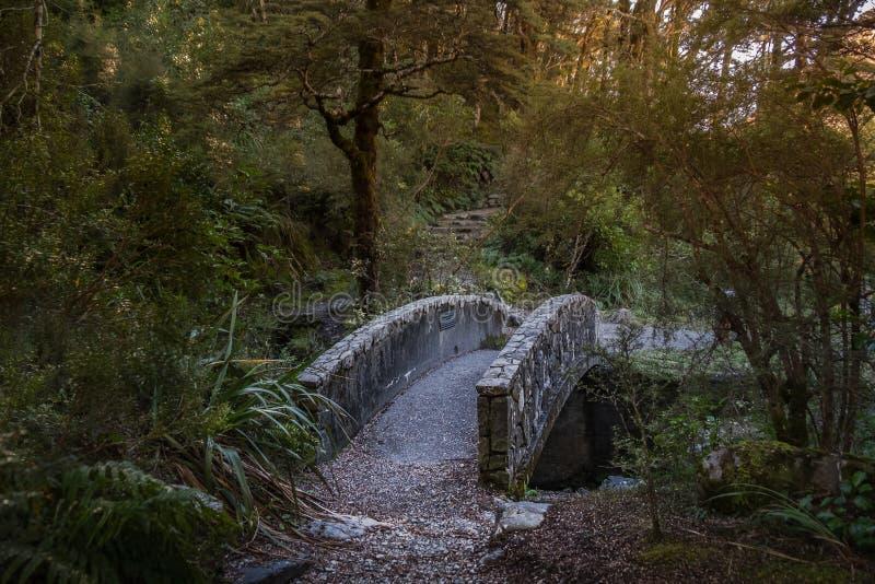 Parque nacional da passagem do ` s de Arthur, Nova Zelândia fotografia de stock