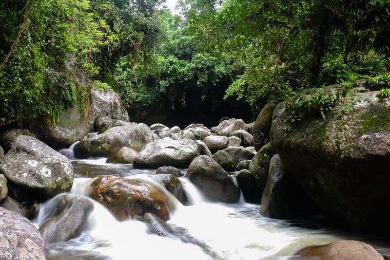 Parque Nacional da Serra dos的Orgaos河在Guapimirim,里约 免版税库存图片