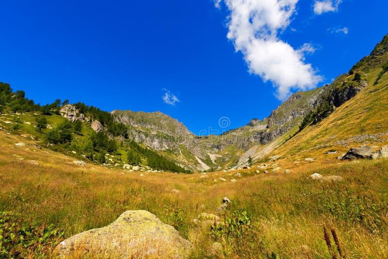 Parque nacional de Adamello Brenta - Italia imagenes de archivo