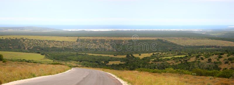 Parque nacional de Addo foto de stock royalty free