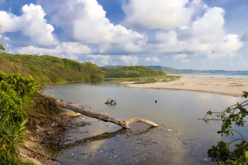 Parque nacional de Alas Purwo fotos de archivo