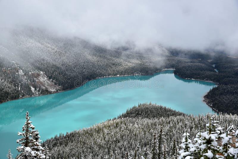 Parque nacional de Banff do lago Peyto foto de stock royalty free
