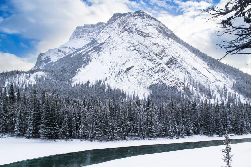 Parque nacional de Banff en invierno imagen de archivo libre de regalías