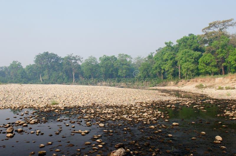 Parque nacional de Bardia em Nepal imagens de stock